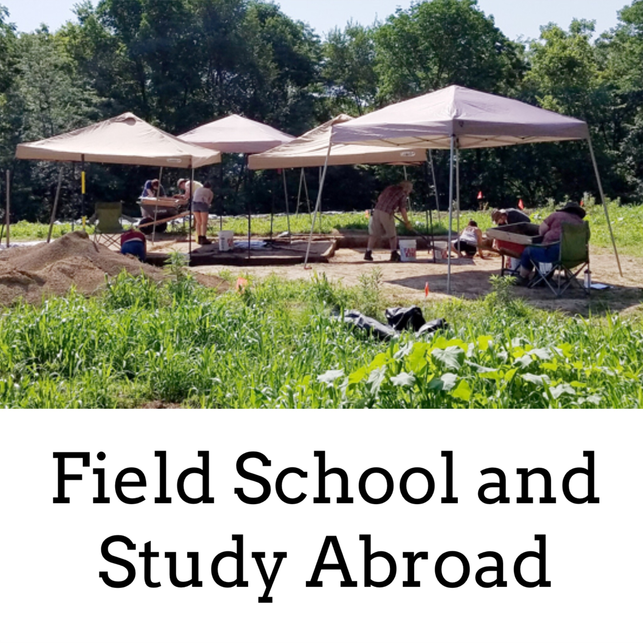 Field School and Study Abroad.