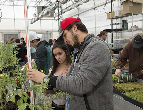 students in the greenhouse