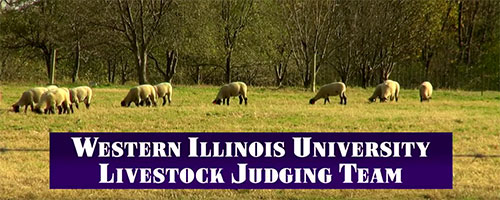 YouTube video It's a Great Day to Be a Part of the WIU Livestock Judging Team