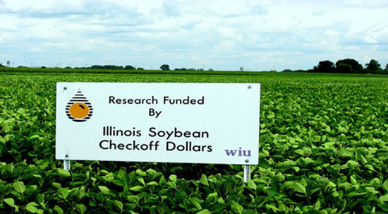 Illinois Soybean field sign