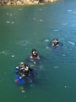 Ice Dive February 2016