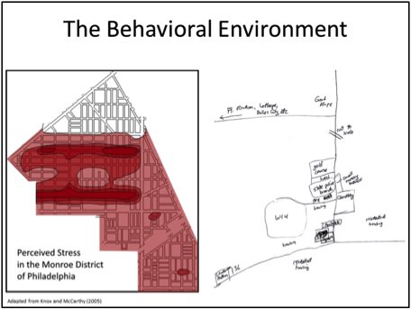 The Behavioral Environment