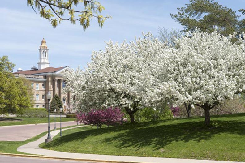 Sherman Hall in the Spring
