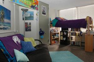 Attractive Loft Dorm ... Part 9